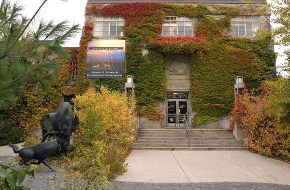 Bellmuseum